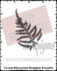 Fern Sprig Cling Mounted Rubber Stamp from Red Rubber Designs
