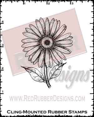 Gerbera Daisy Cling Mounted Rubber Stamp from Red Rubber Designs