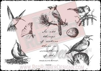 All Things Of Nature Unmounted Rubber Stamps from Red Rubber Designs