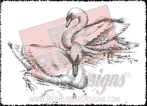 Swans Unmounted Rubber Stamp from Red Rubber Designs