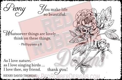 Lovely Peony Unmounted Rubber Stamps from Red Rubber Designs